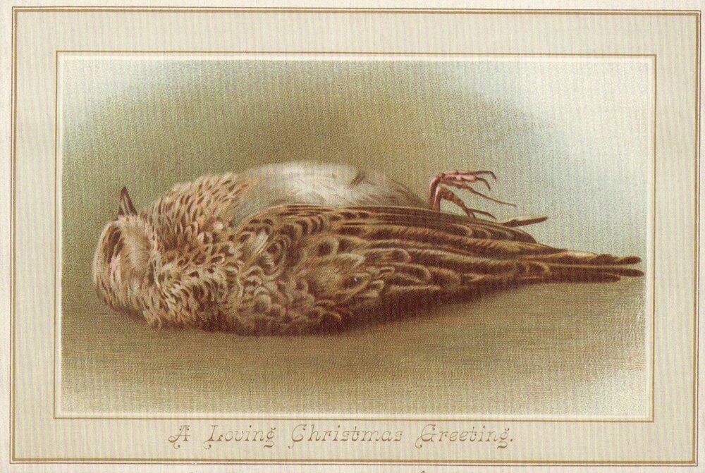 Різдвяна листівка з мертвою пташкою