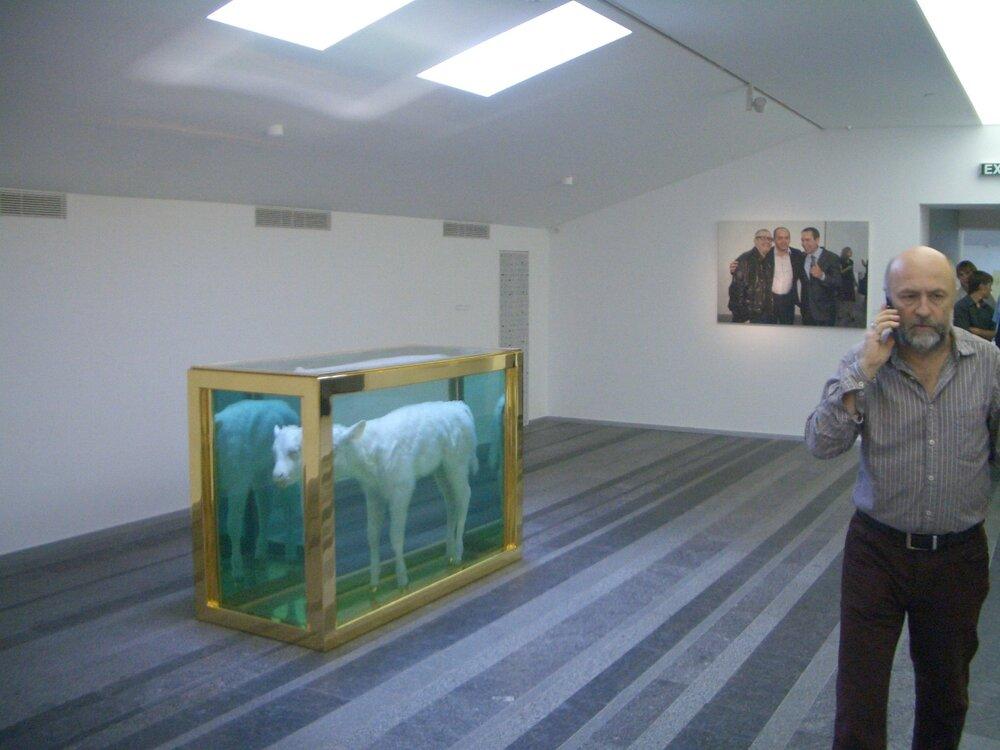 Робота Демієна Херства в PinchukArtCentre, 2009 рік. Фото надане Олександром Соловйовим