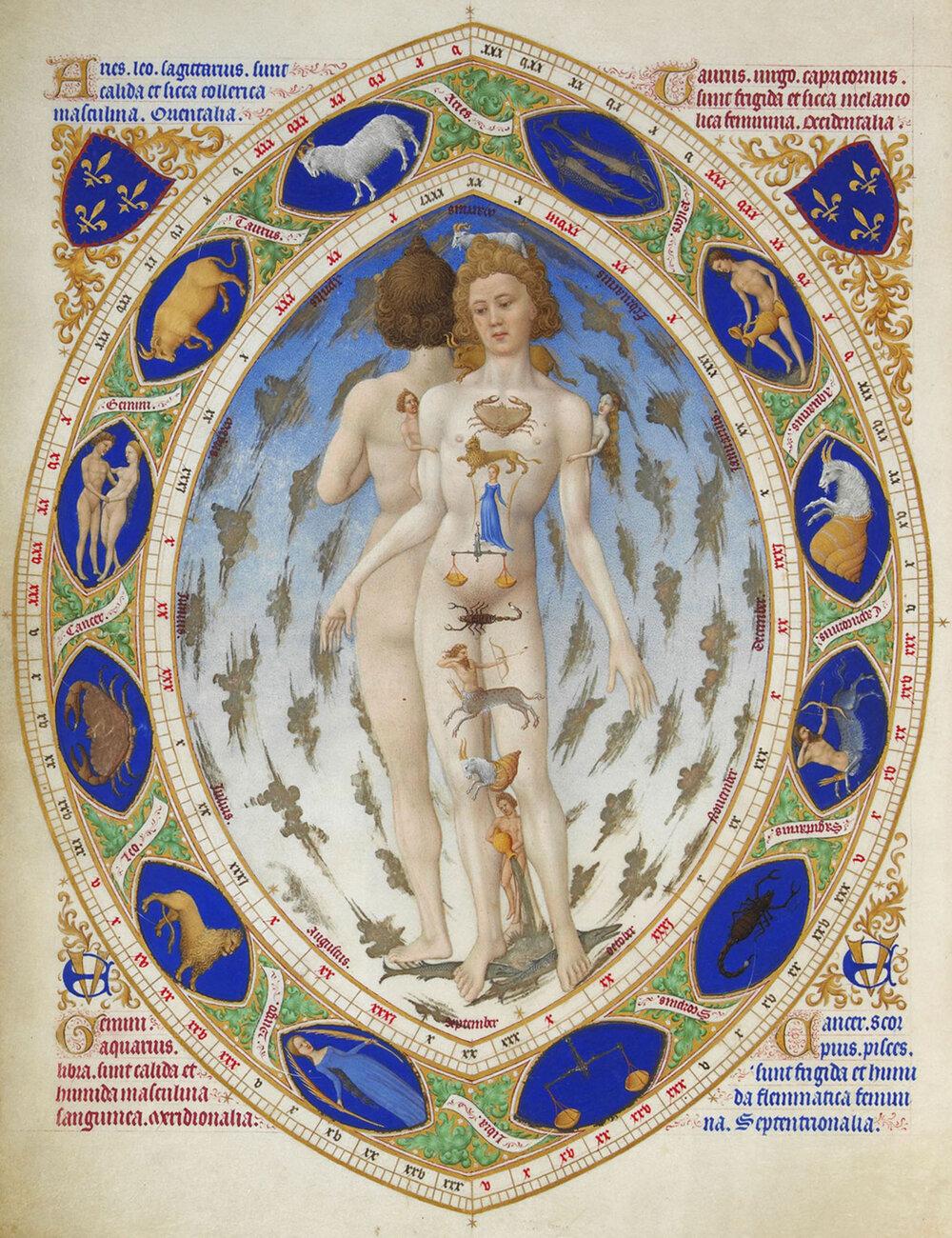 Анатомічна людина, мініатюра з «Розкішного часослова» герцога Беррійського, 1411–1416, Музей Конде, (Шантійї, Франція)