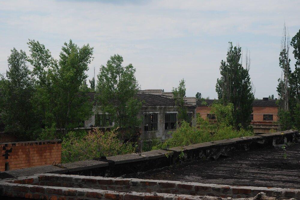 ДСК, 2018. Фото: Наталка Дяченко