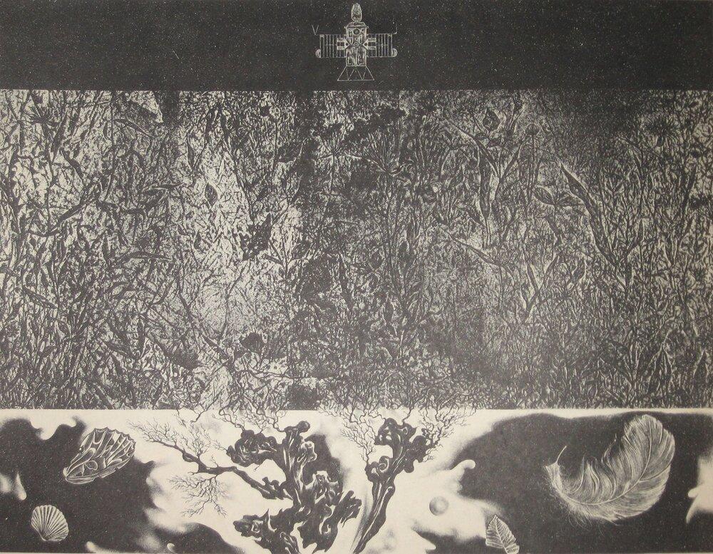 Валерій Дем'янишин. Політ. 1976 р. Літографія.