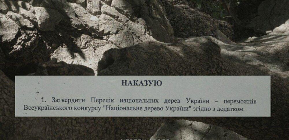 photo_2020-06-11_15-15-24.jpg