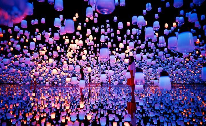 Forest of Lamps. Світлина: intmedia