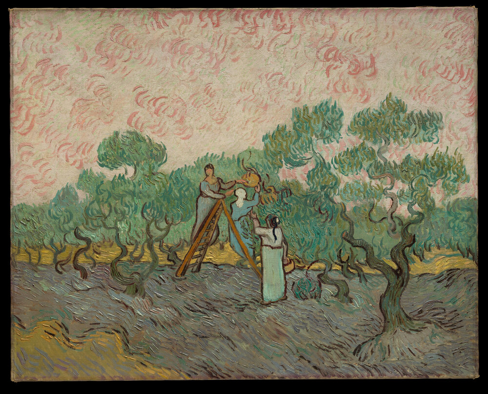 Вінсент ван Гог Women Picking Olives, 1889
