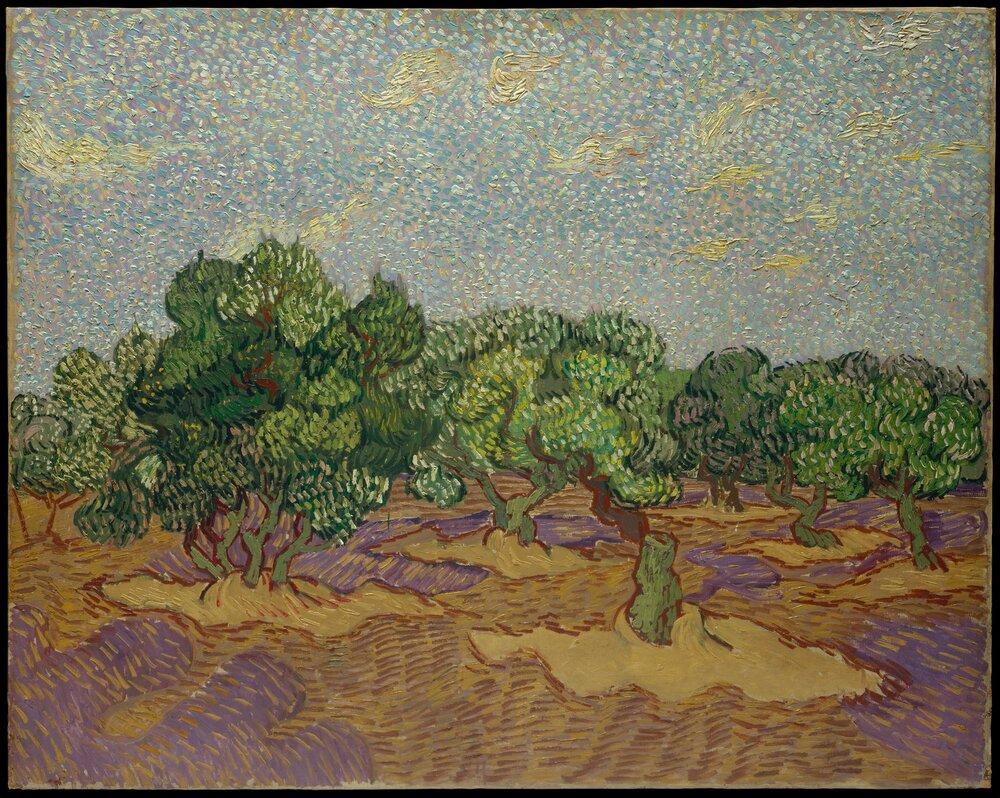 Вінсент ван Гог, Olive Trees, 1889