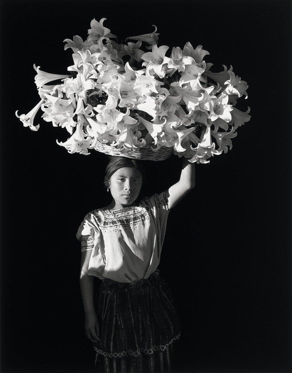 Флор Гардуньо, Basket of Light, 1989