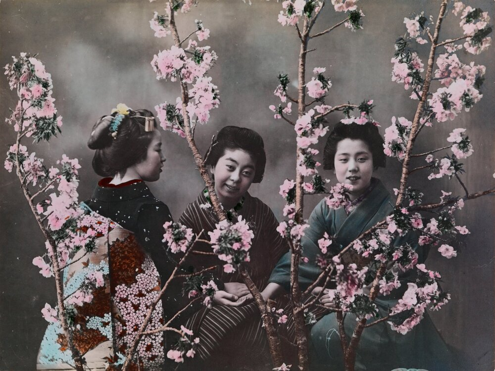 Eliza R, японки у національних костюмах