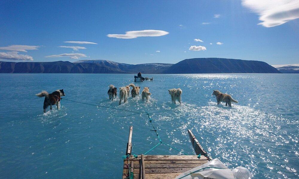 Санки пропливають через стоячу воду на морському льоду під час експедиції по північно-західній Гренландії. Кожну зиму в районі густого льоду утворюється переломи для стікання талої води. Світлина: Steffen Olsen/Centre for Ocean and Ice