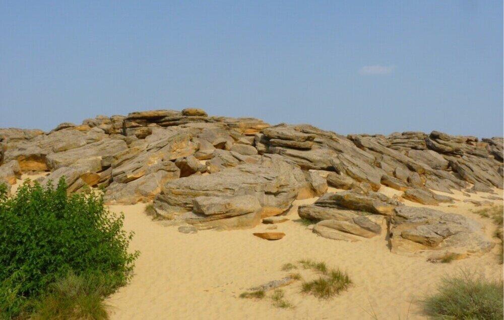Кам'яна могила, Запорізька область. Світлина:  chymatskum