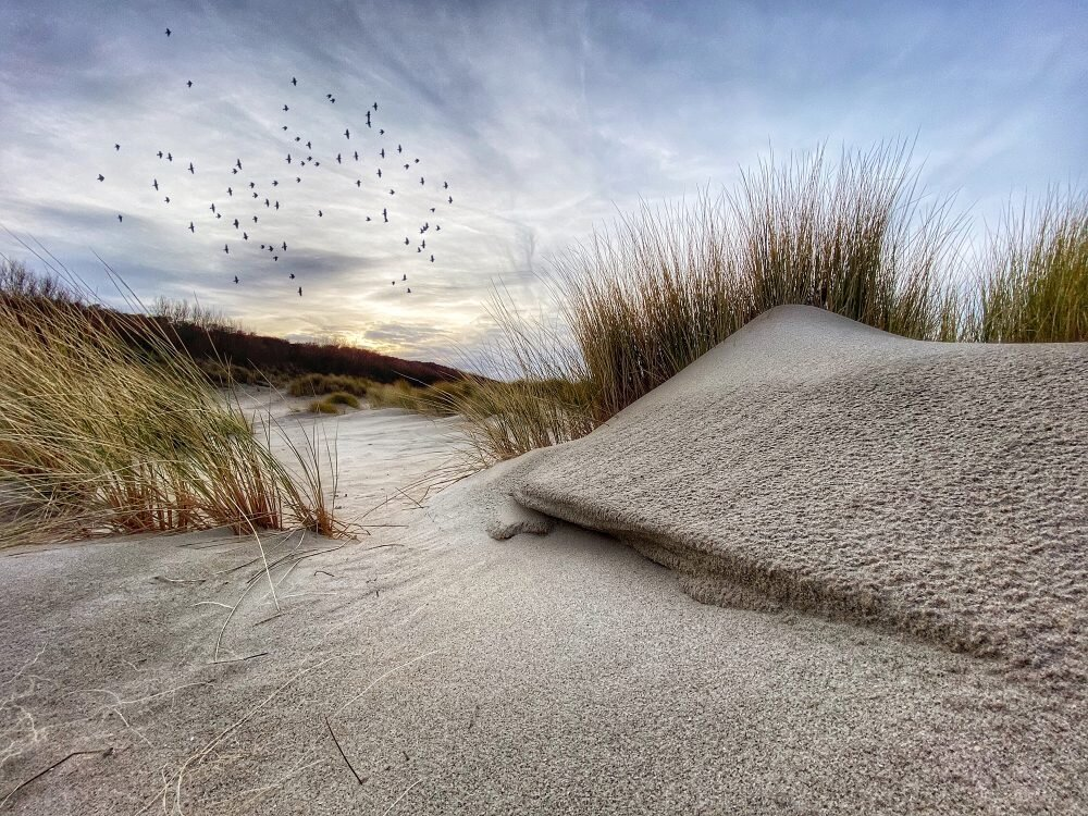 2 місце Landscape. Ніко Бронс Duned, 2020. Сфотографовано на iPhone 11Pro Max