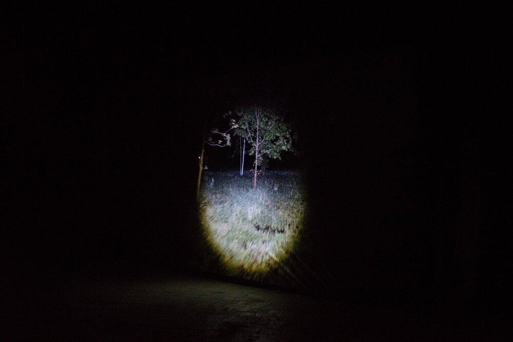 Выставка Антона Саенко «Смуга». 2019. Closer. Фото: Наталка Дяченко