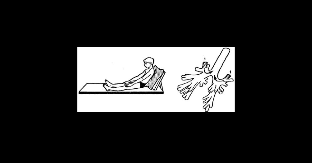 Изображение: Учебно-методическое пособие «Физическая культура для лиц с отклонениями в состоянии здоровья (адаптивная физическая культура)»